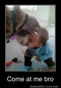 EDITED VERSION - terrible picture baby and dog 2-19-213